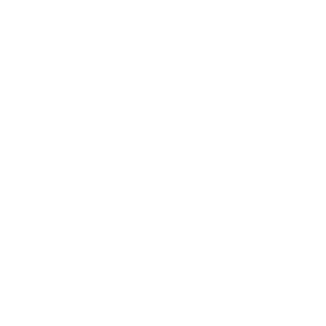 icon-organigramma